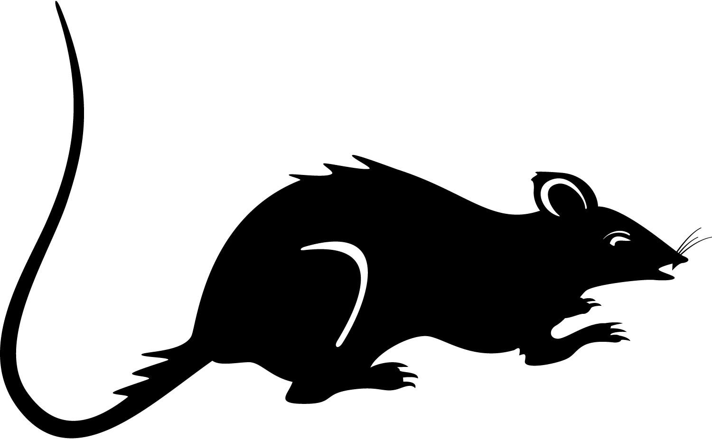 Rat clip art free clipart images 6.