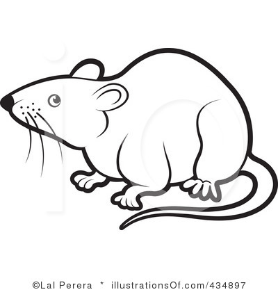 Images of clipart rats.