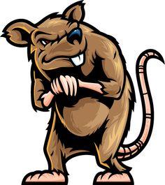 10 beste afbeeldingen van Ratten.