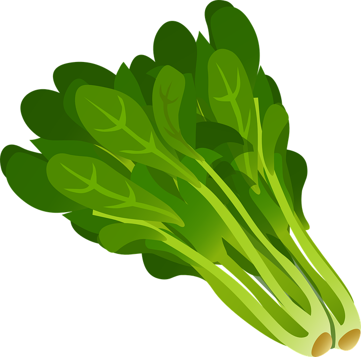 Free vector graphic: Green, Leafy, Vegetables, Leaves.