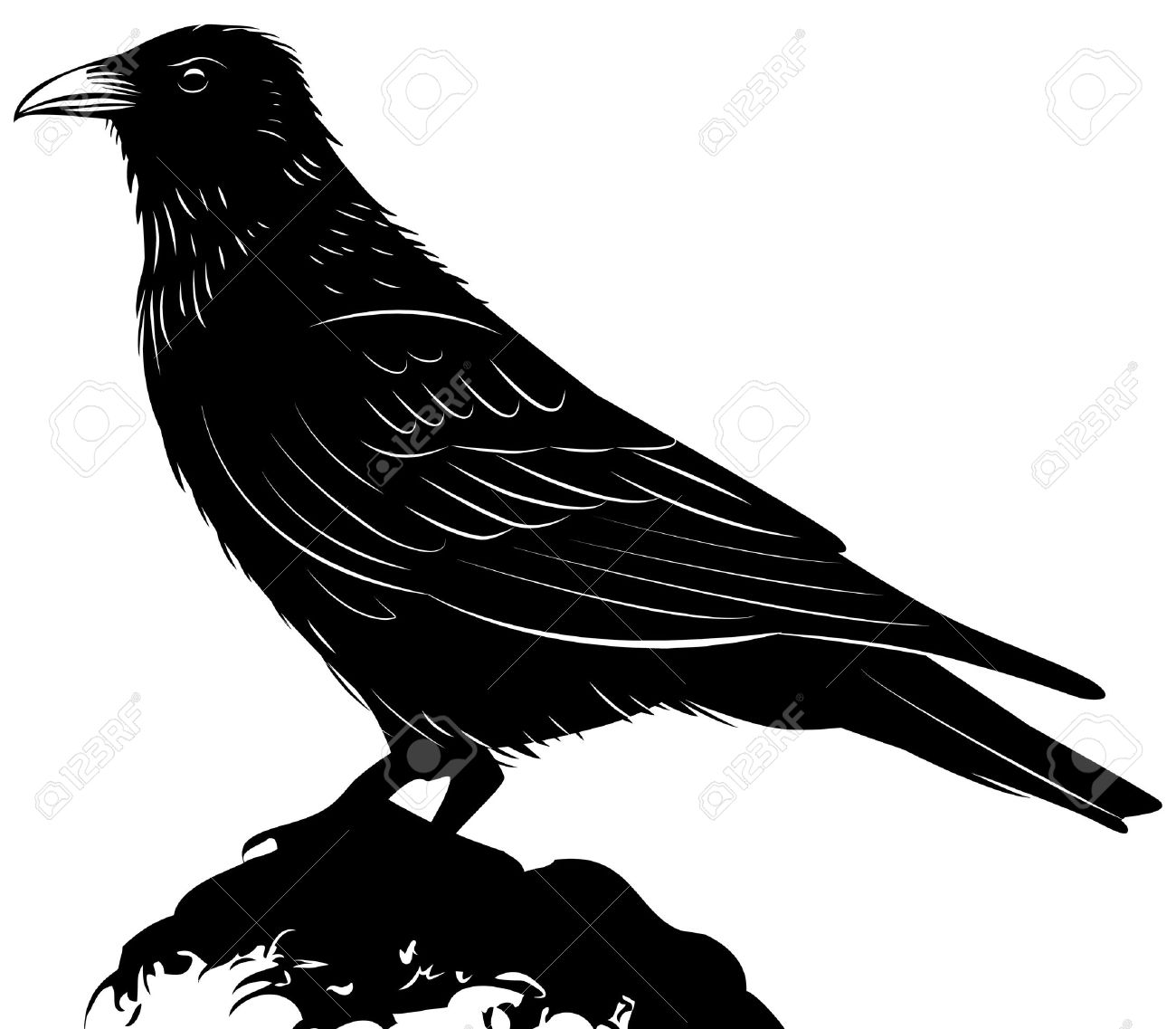 7,191 Raven Stock Vector Illustration And Royalty Free Raven Clipart.