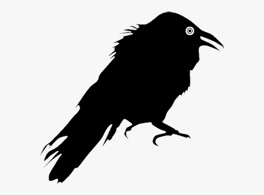freetoedit #sticker #raven #crow #halloween #black.