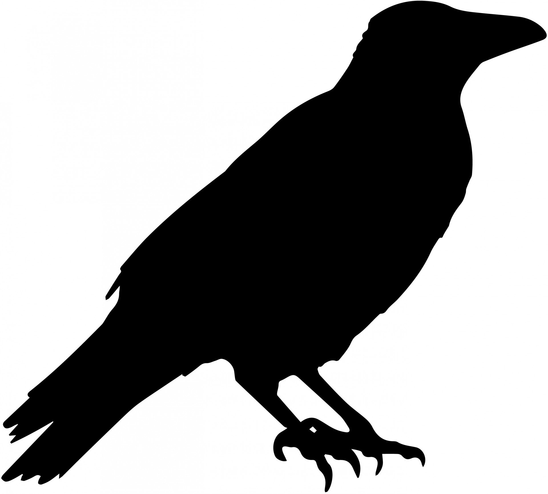 Free Raven Silhouette.