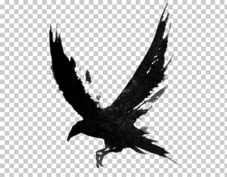 Common raven Tattoo Bird Drawing , Flying Crow , bald eagle.