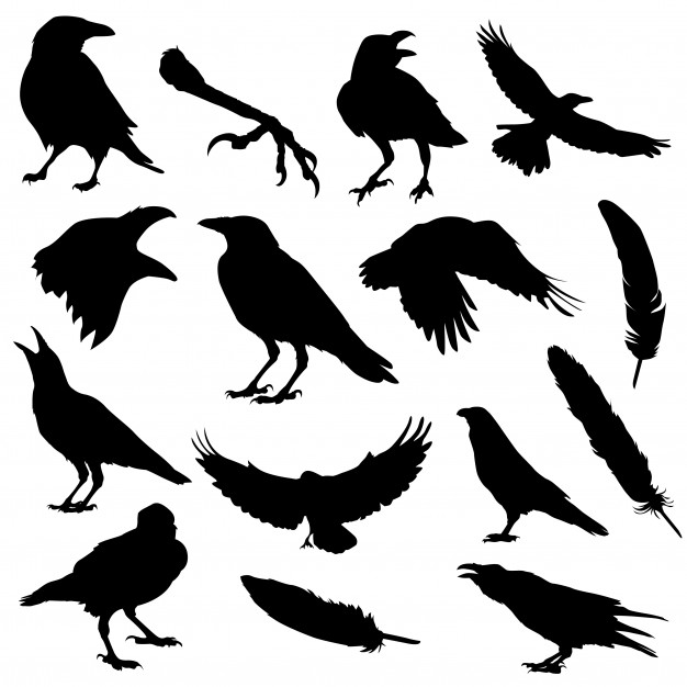 Raven bird halloween silhouette clip art Vector.