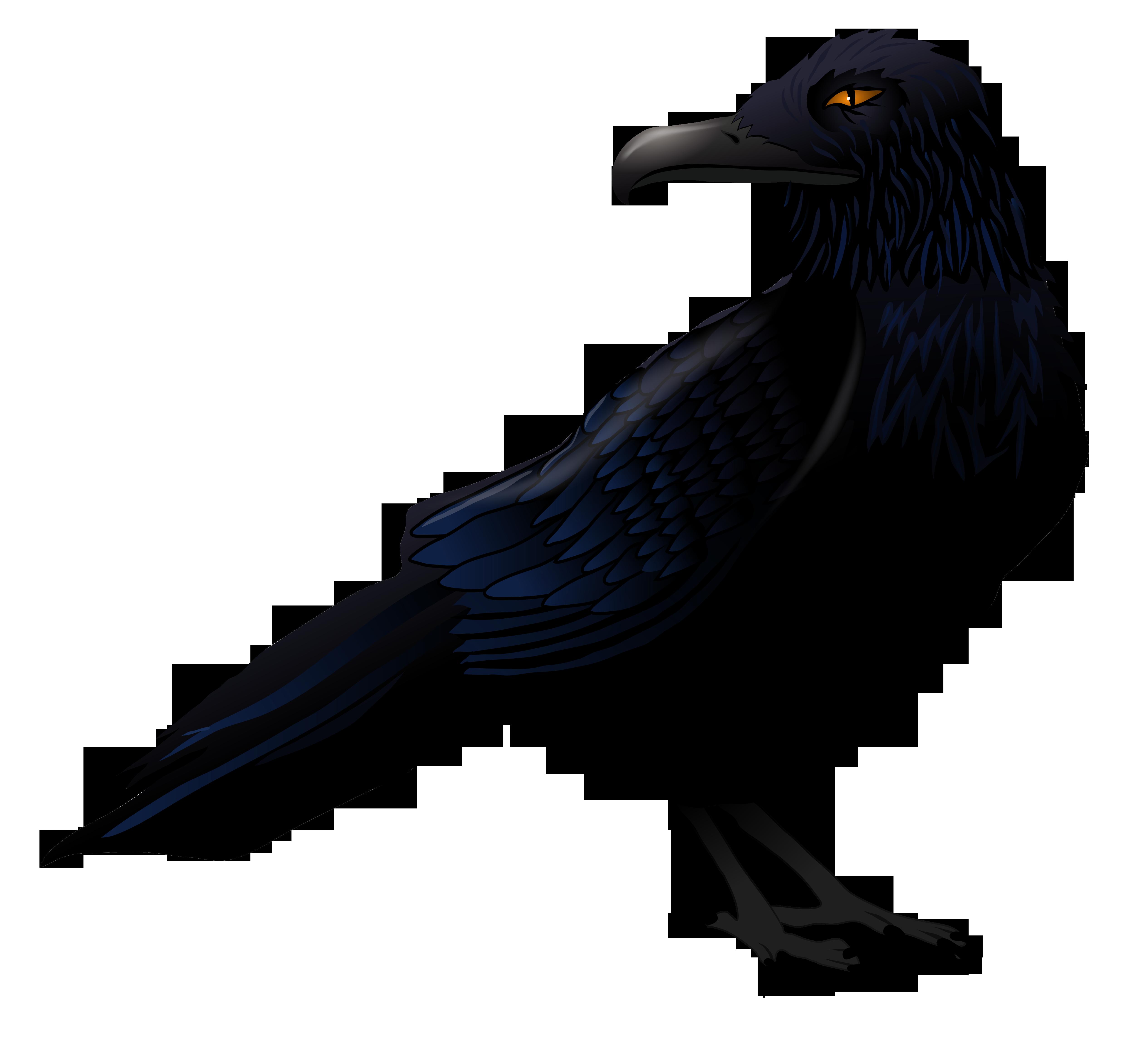 Haunted Raven PNG Vector Clipart.