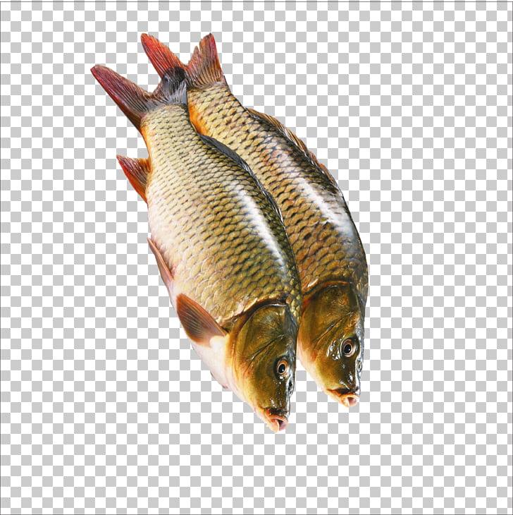Kipper Sashimi Crudo Fish, Raw fish PNG clipart.
