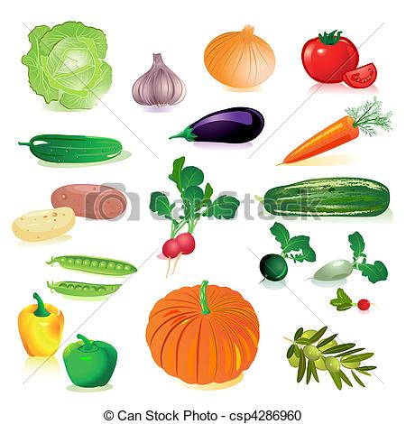 Raw vegetables clipart.