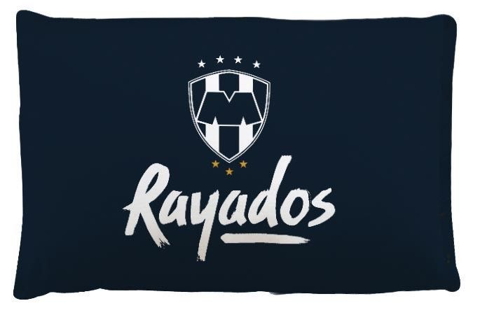 Image result for rayados logo.