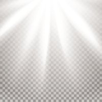 Rays of Light Stock Vector.