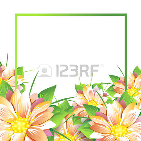 Yellow Aster Stock Photos Images. Royalty Free Yellow Aster Images.