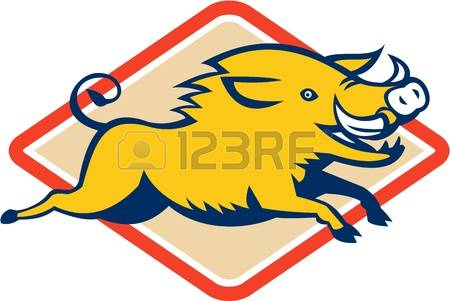 5,621 Wild Pig Stock Vector Illustration And Royalty Free Wild Pig.