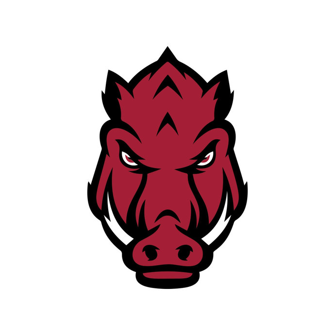Arkansas Razorbacks Head Cricut Silhouette graphics design SVG DXF EPS Png  Cdr Ai Vector Art Clipart Digital Instant download Cut Print File.