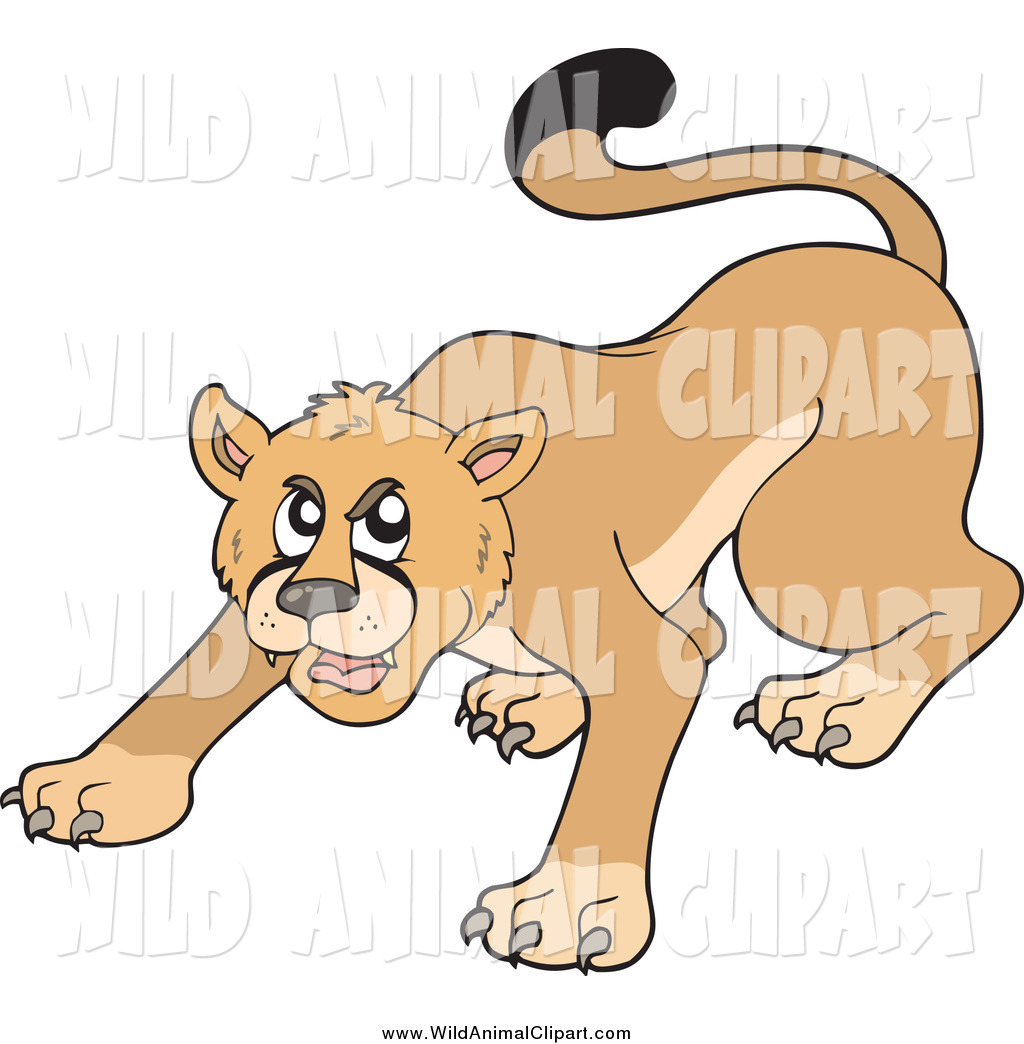 Clip Art of a Aggressive Cougar Ready to Pounce by visekart.