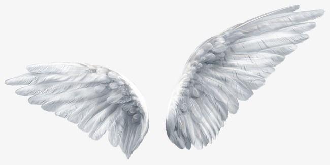 Angel Wings, Angel Clipart, Wings Clipart, Wing PNG.