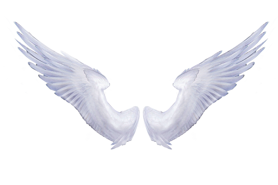 Free Realistic Angel Wings Png, Download Free Clip Art, Free.