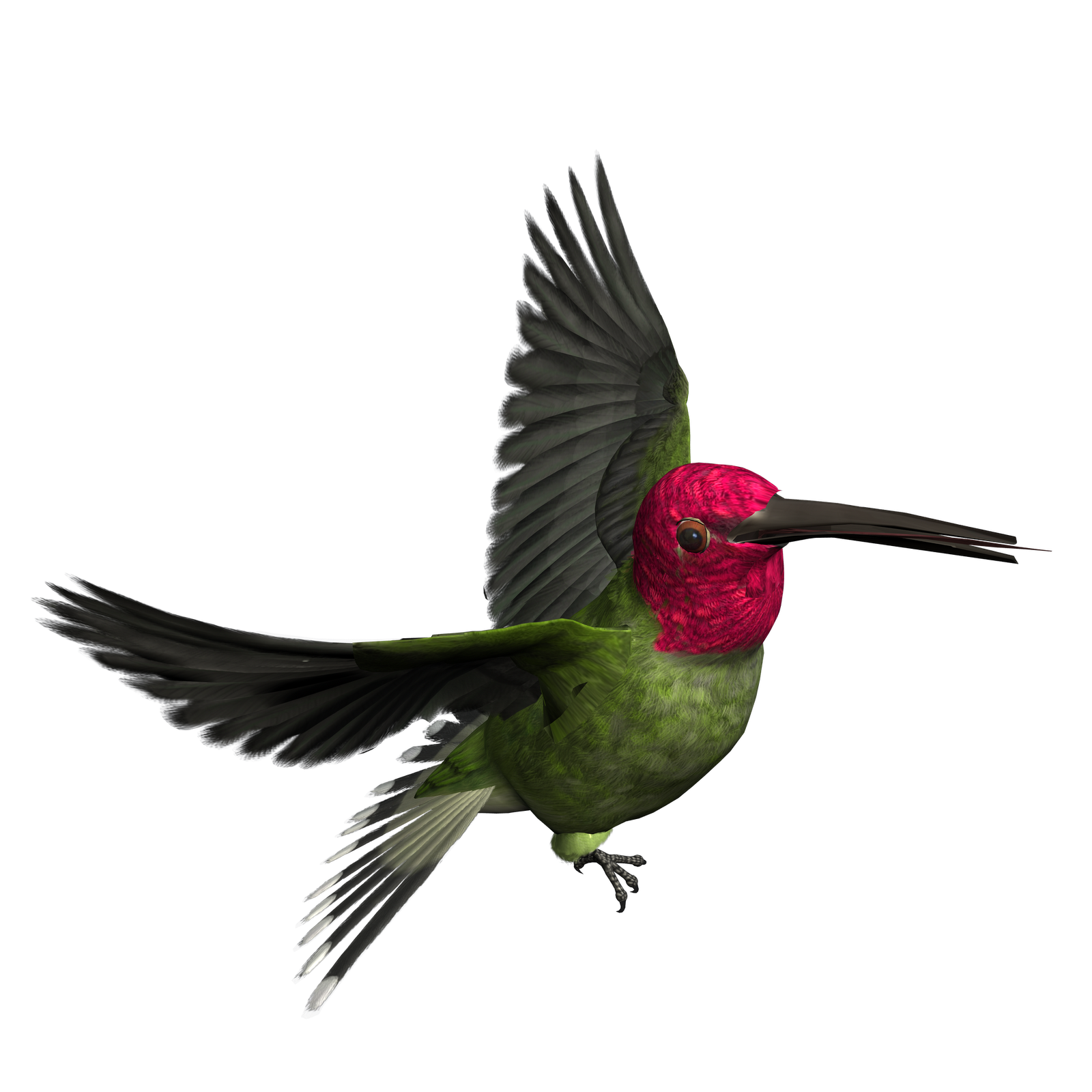 Free Bird Png, Download Free Clip Art, Free Clip Art on.