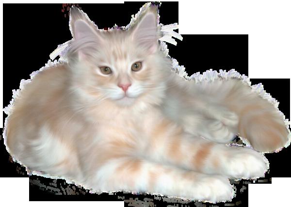 Cream cat polyvore moodboard filler.