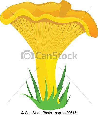 Vector Clip Art of chanterelle mushroom.