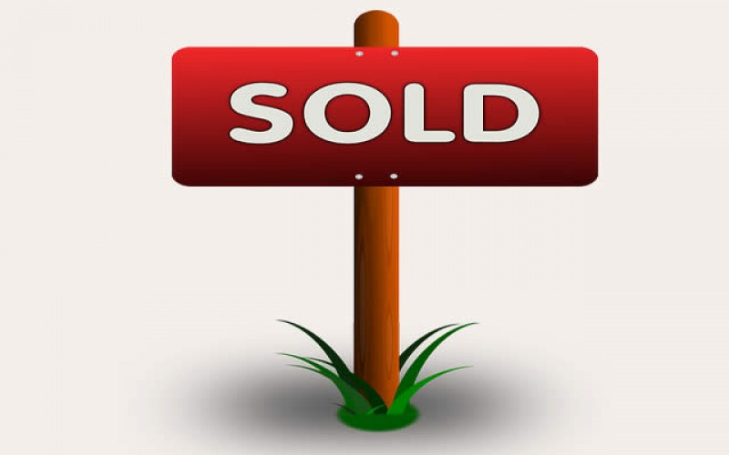 Showing post & media for Real estate sold sign cartoon.