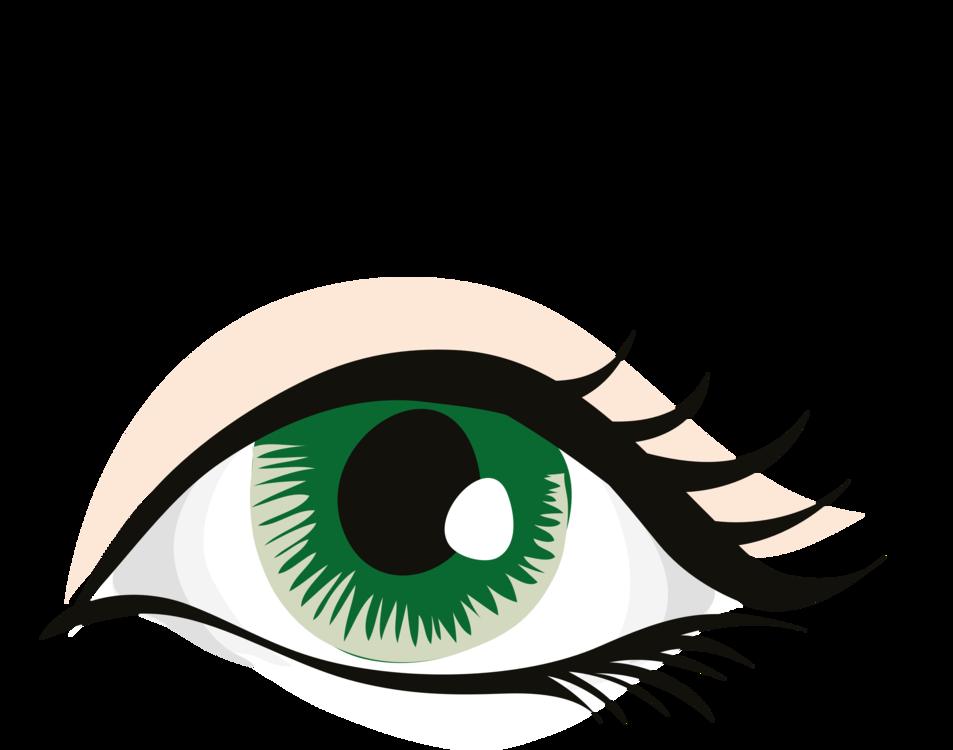 Eye And Eyebrow Clipart.