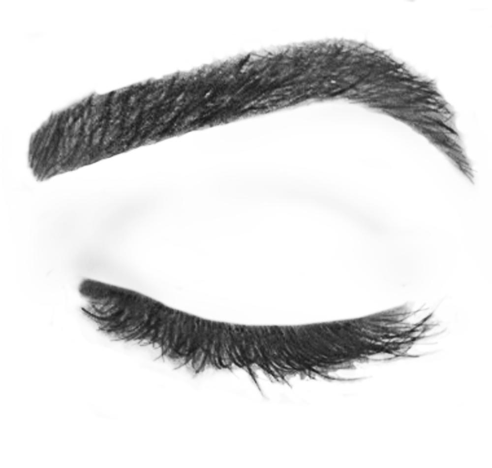 Eyebrow clipart eyebrow shape, Eyebrow eyebrow shape.