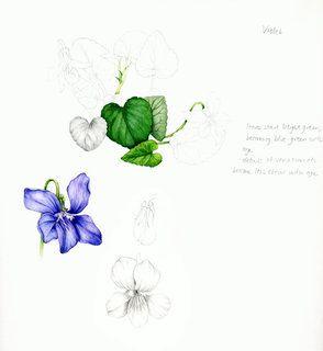 1000+ images about Рисуем листья on Pinterest.
