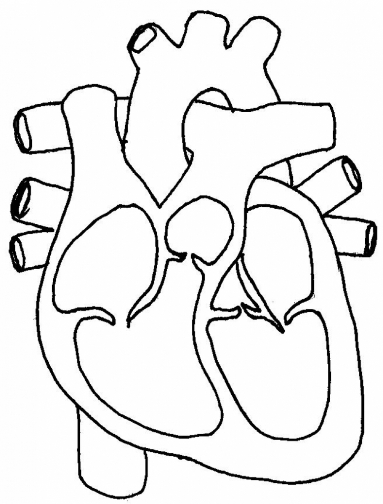 Real heart the label of a human heart real clipart clip art.