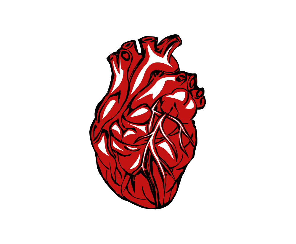 real heart png clipart transparent without background image.
