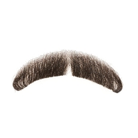 Download Moustache Free PNG photo images and clipart.