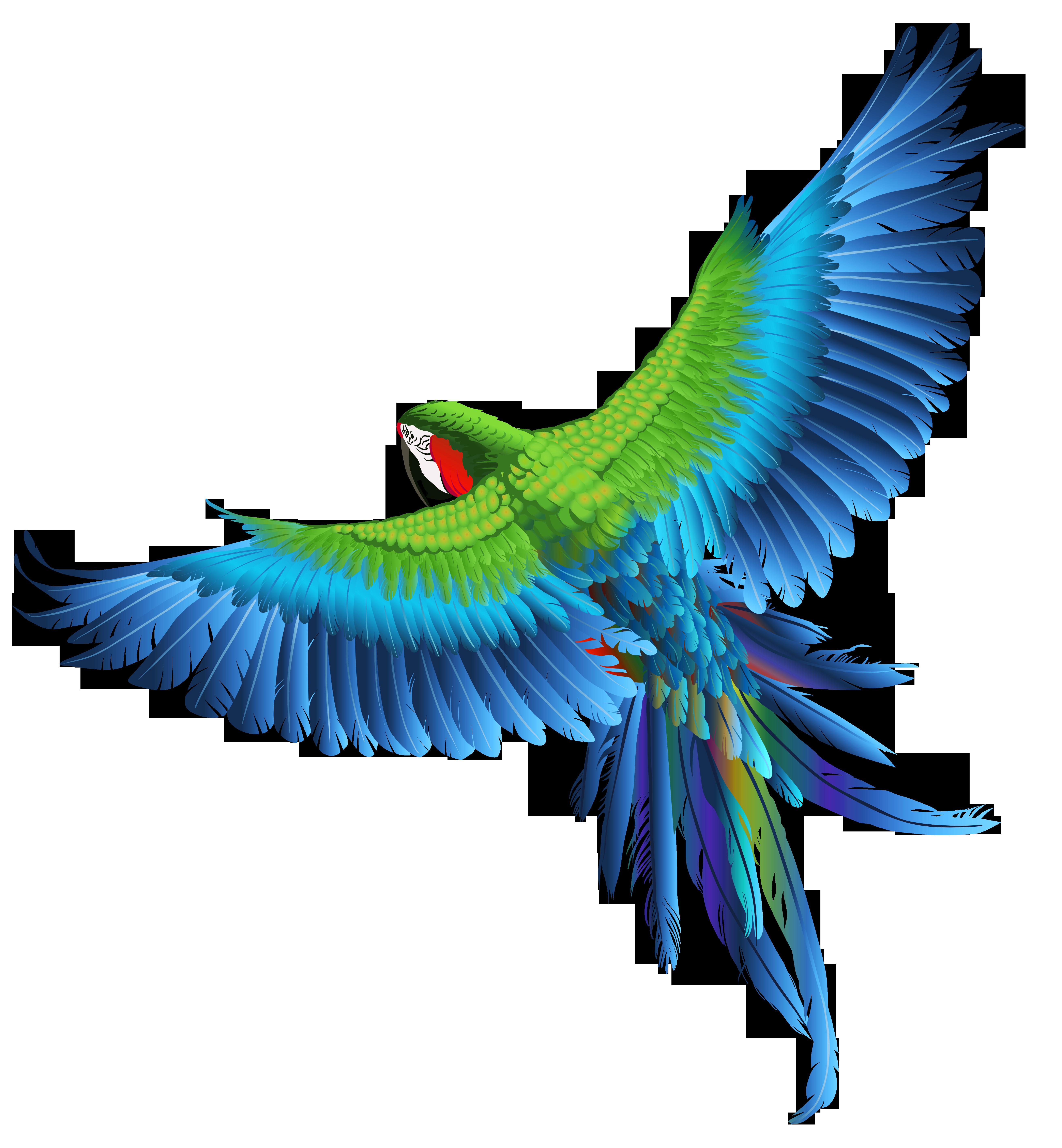 Transparent_Parrot_Clipart_Picture.png?m=1425938228.