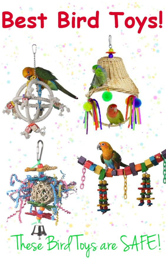 Here is a Huge LIST of the Best Bird Toys, made in the USA.