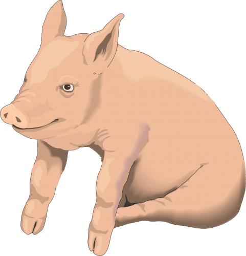 Clipart Pig Background.