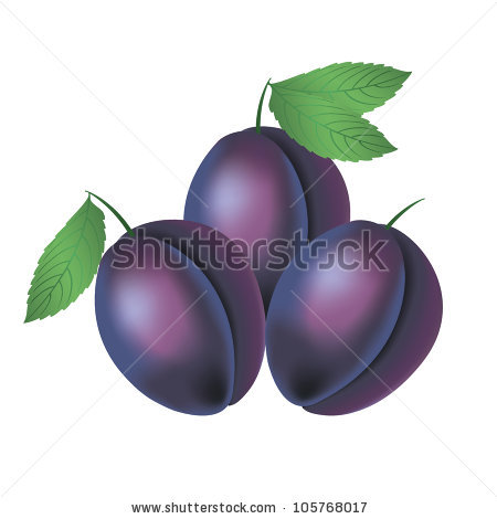 Three Plums On A White Background Stock Vectors & Vector Clip Art.