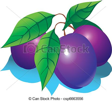 Plums Illustrations and Clip Art. 7,091 Plums royalty free.