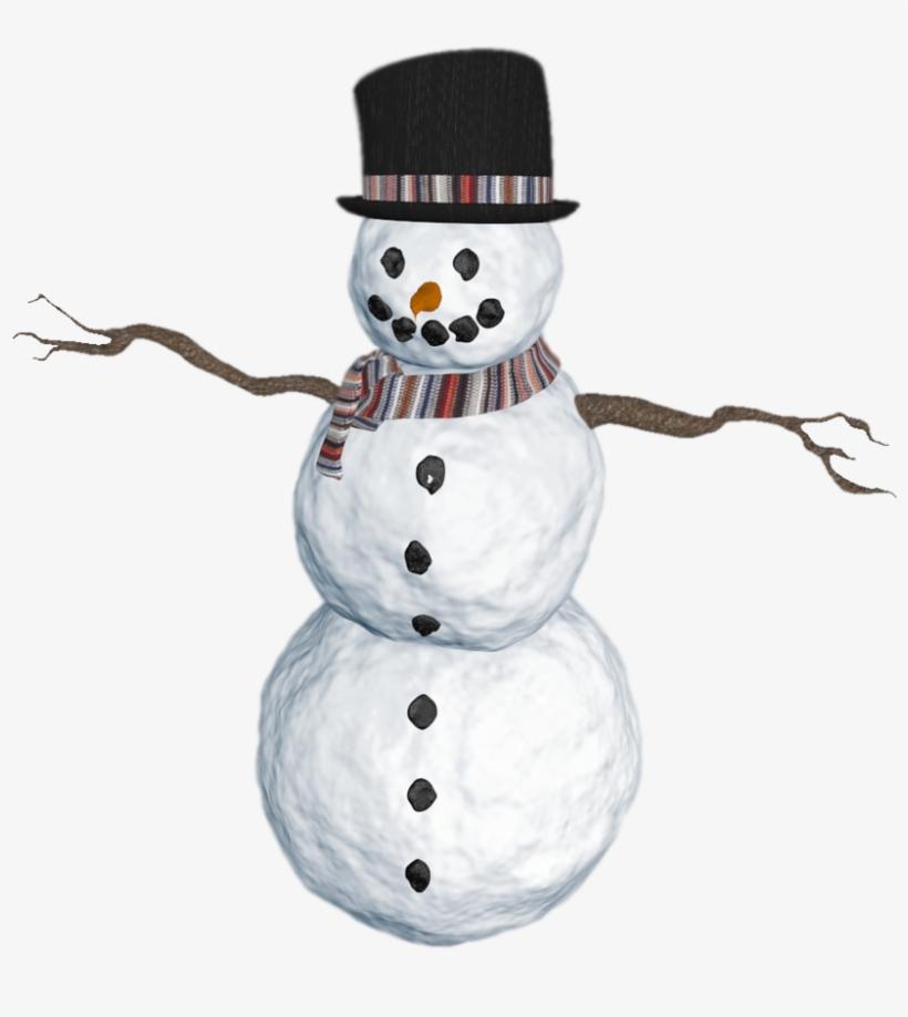 Transparent Real Snowman Transparent PNG.