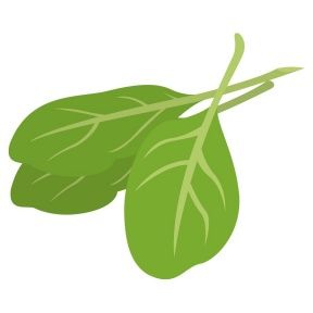 Vegetable Clipart : SPINACH : Classroom Clipart.