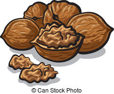 Walnut Clipart and Stock Illustrations. 2,252 Walnut vector EPS.