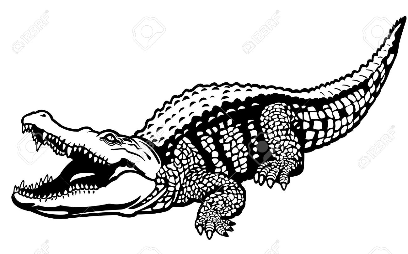 Realistic Animal Clipart Black And White Vector.
