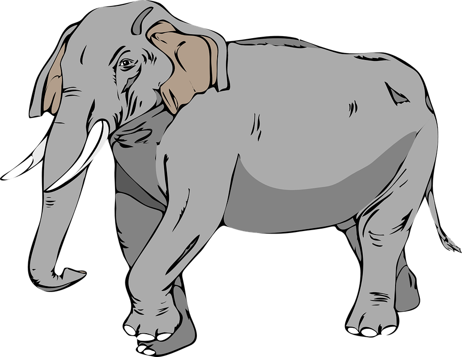 Free vector graphic: Elephant, Large, Animal, Mammal.
