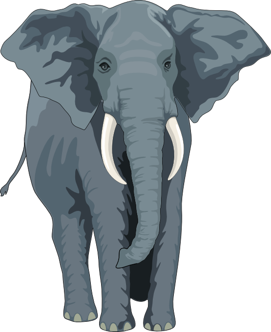 Realistic Animal Clipart Free.