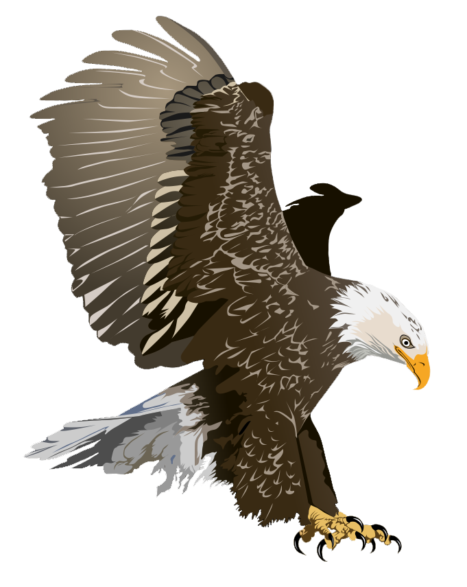Free Realistic Birds Cliparts, Download Free Clip Art, Free.