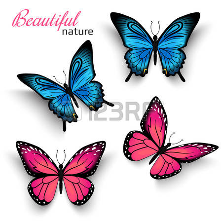 135,500 Butterfly Cliparts, Stock Vector And Royalty Free.