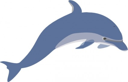 Realistic Dolphin Clipart.