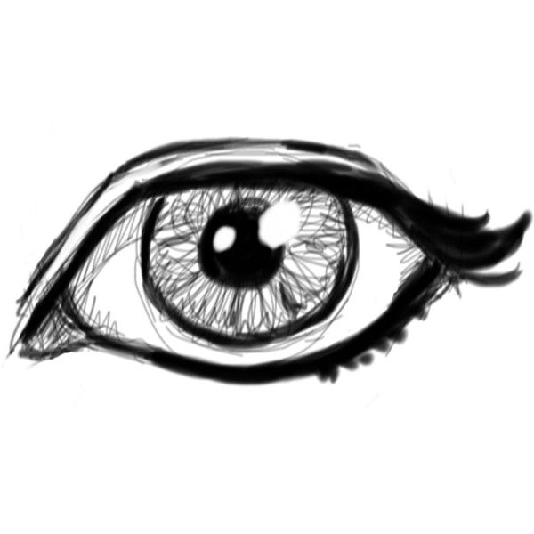 Realistic eyes clipart transparent background clipground for Girly drawings step by step