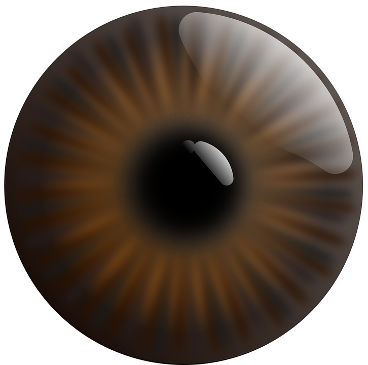 Free vector graphic: Eye, Realistic, Iris, Brown, Pupil.