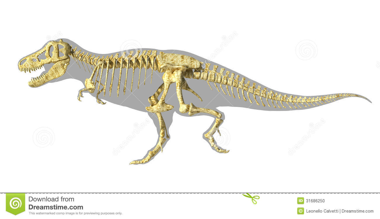 realistic t rex clipart 20 free cliparts download images
