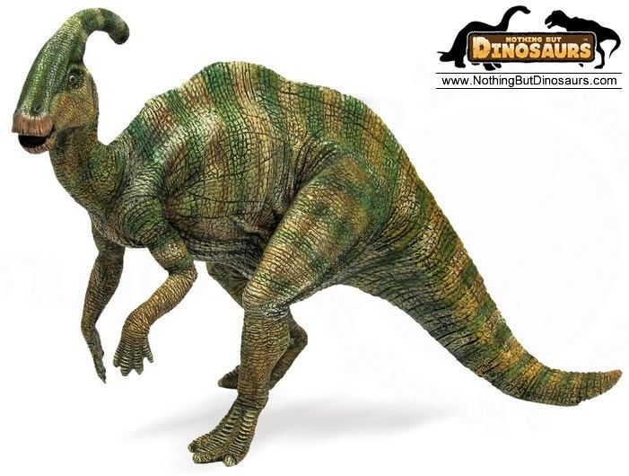 Top 47 ideas about Dinosaurs on Pinterest.