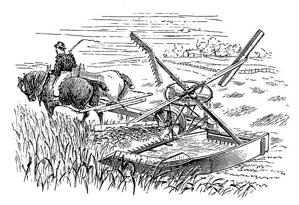 Ancient Reaping Machine Clip Art, Vector Images & Illustrations.