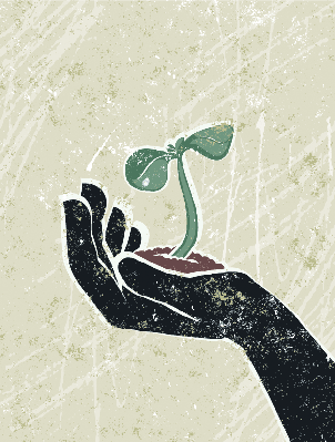 Young Seedling in a Protective Hand.